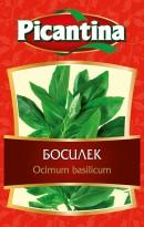 Босилек